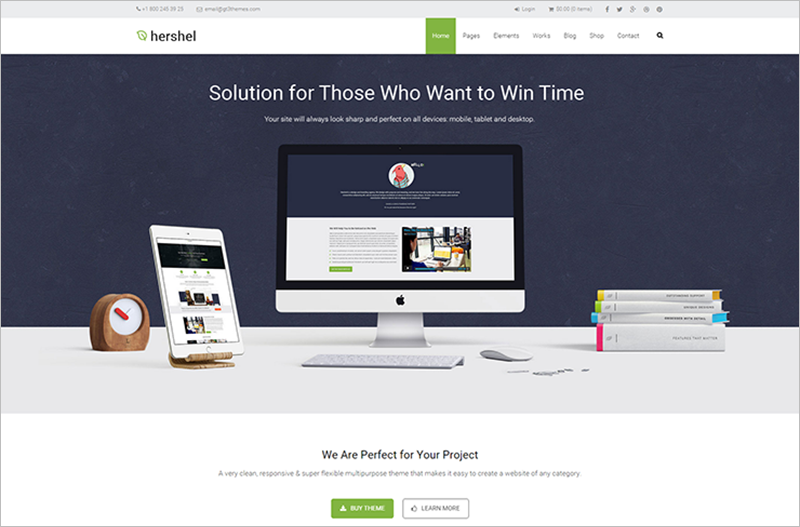 Flexible Multipurpose Business WordPress Theme