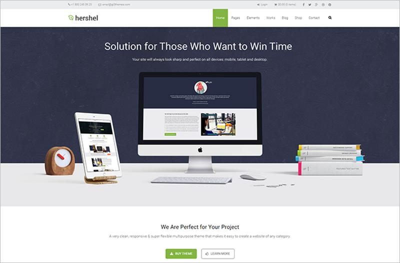 Flexible Multipurpose Business WordPress Theme