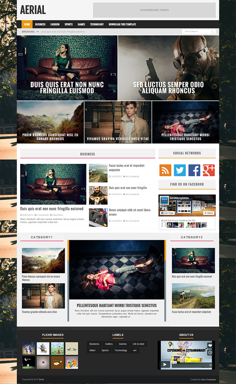 Beautiful Blogger Website Template Free