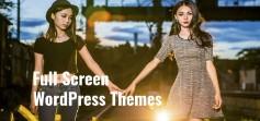 Full Screen Wp Themes