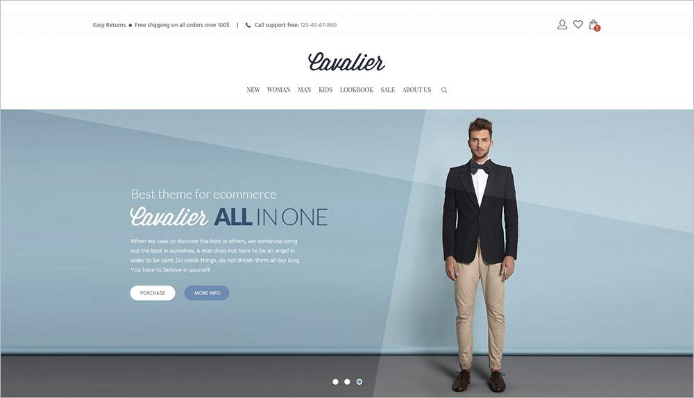 Perfect eCommerce WordPress Theme