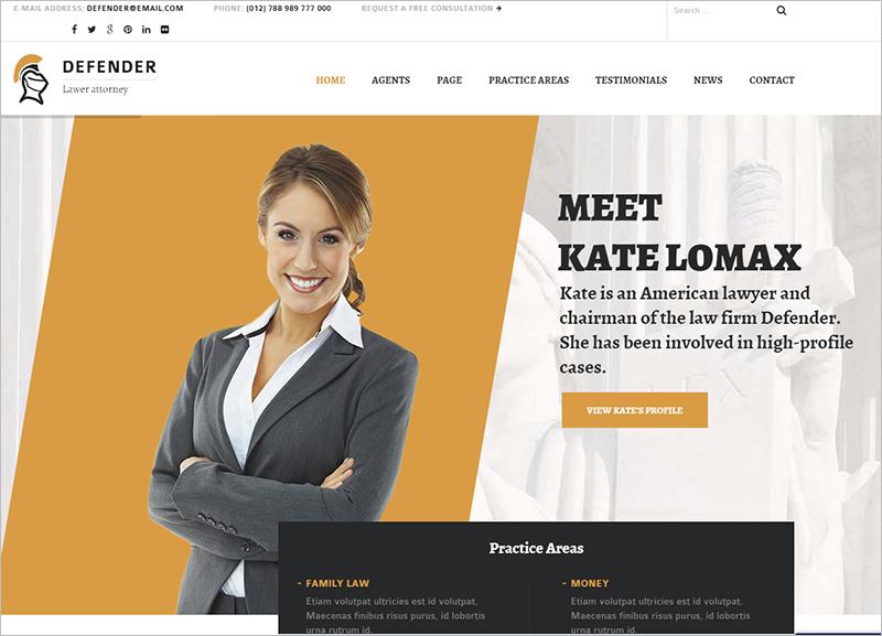 Professional Portfolio WordPress Template