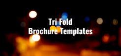 22+ Tri Fold Brochure Templates 2017
