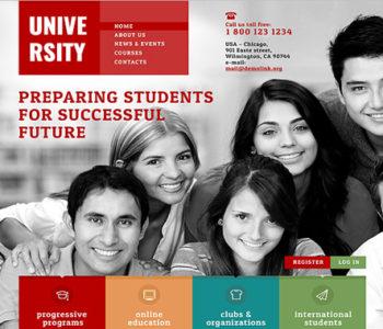 University Website Themes