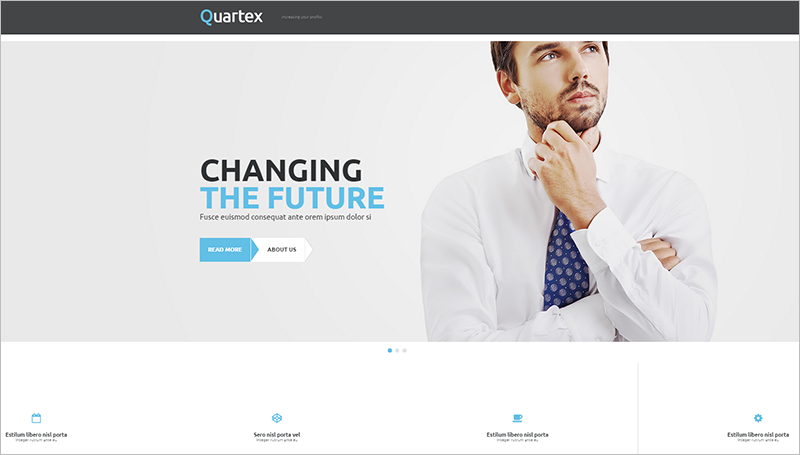 WordPress Portfolio Theme With Customize Typography