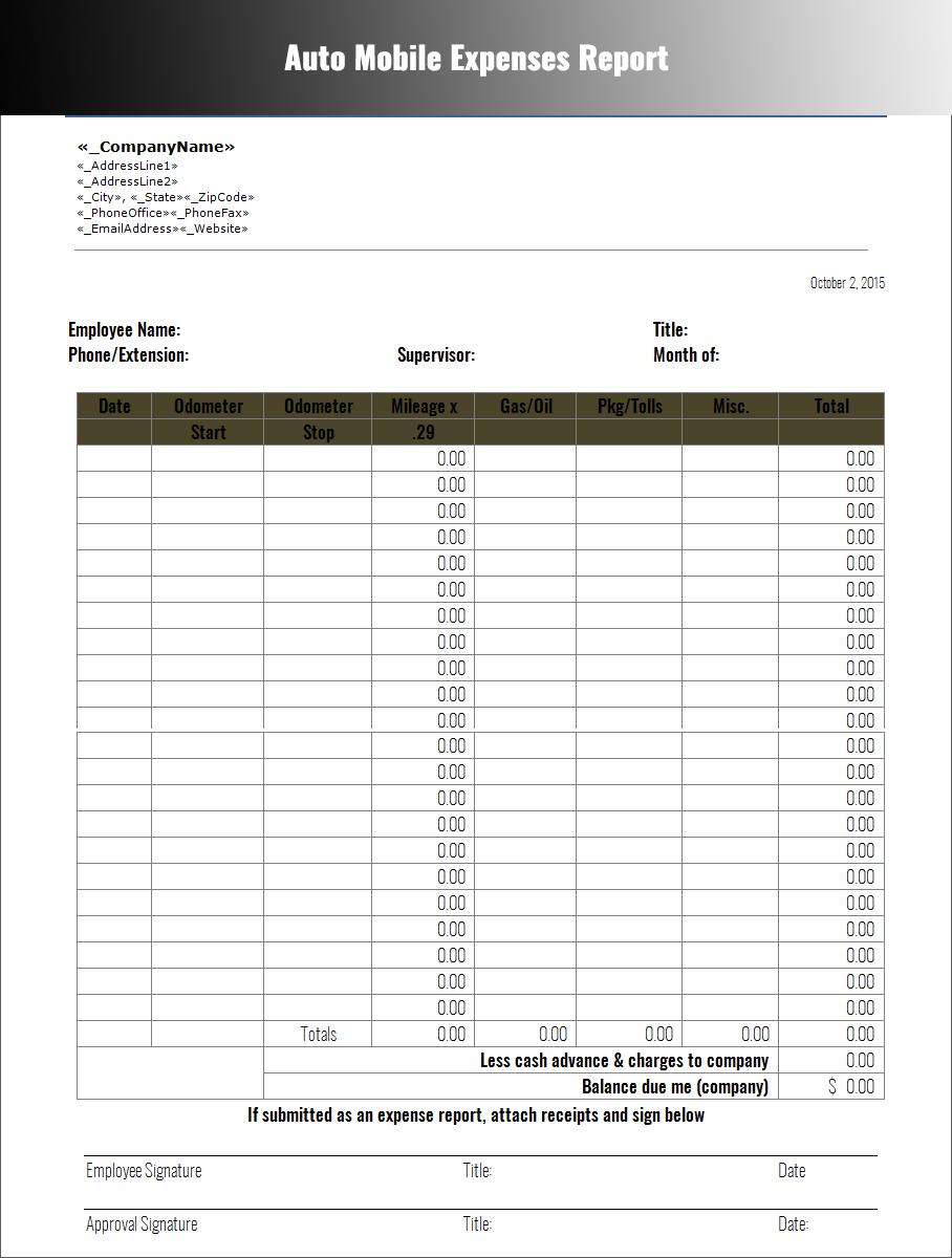 Expenses Report Sample Romes Danapardaz