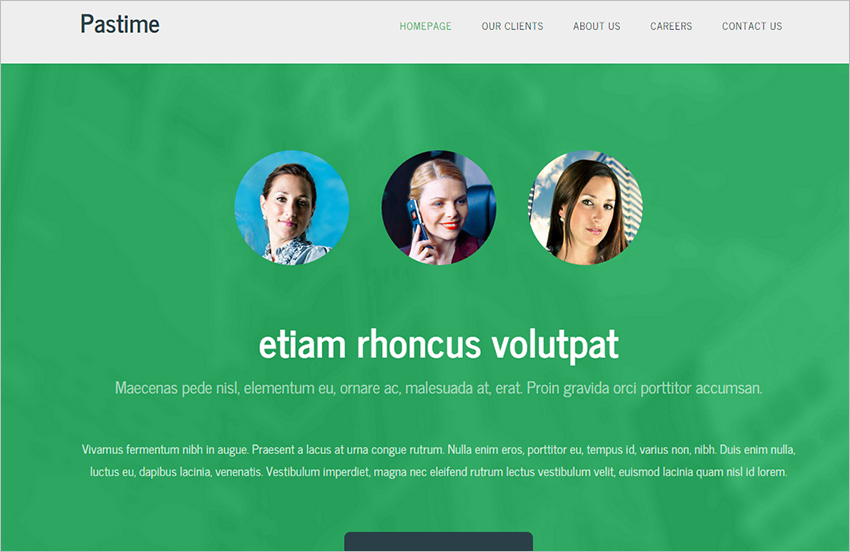 Best Landing Page Theme