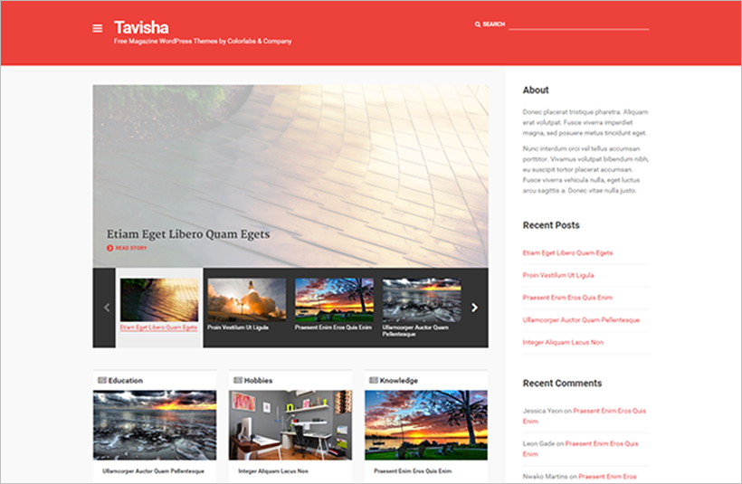 Blogging WP Theme Integrated With Post-Formats