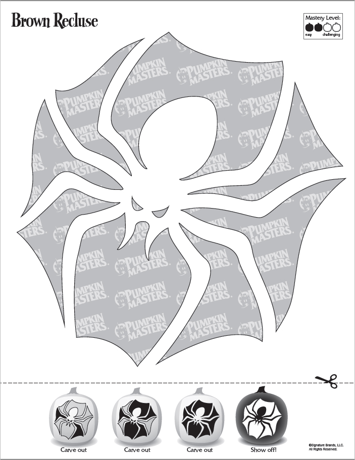 Brown Recluse pdf Pattern for Pumpkin Carving
