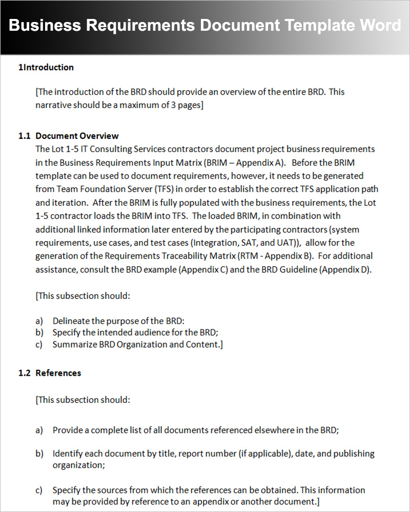 Business Requirements Document Template Word