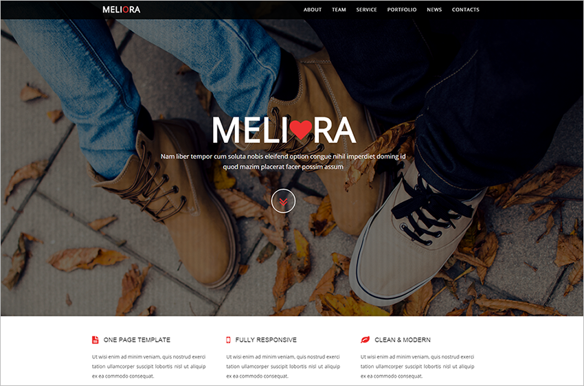 Clean & Modern Responsive One Page HTML5,CSS3 & JQuery Theme