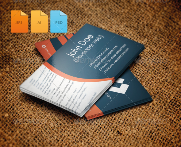 Developer Web Business Card Design