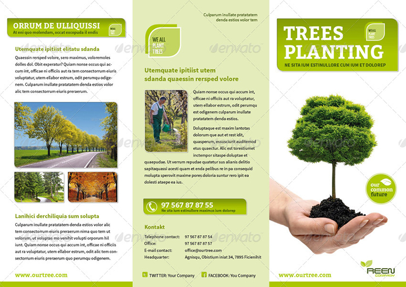 Event or Product Promotion Brochure