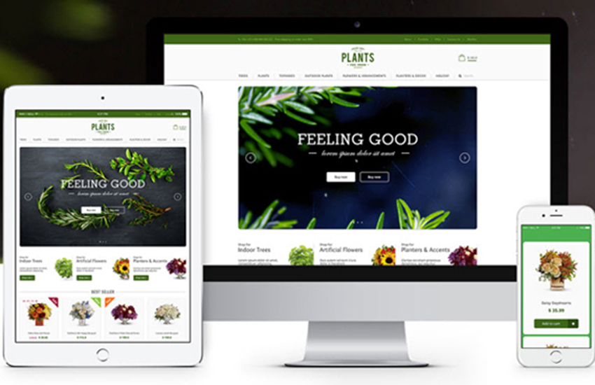 Flowers Online Store Magento Template