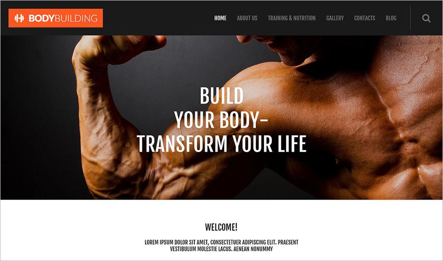 Fully Editable WordPress Blog Theme