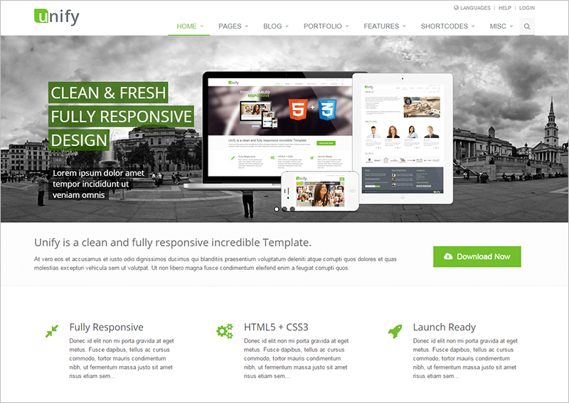 Fully Responsive Bootstrap 3 Template
