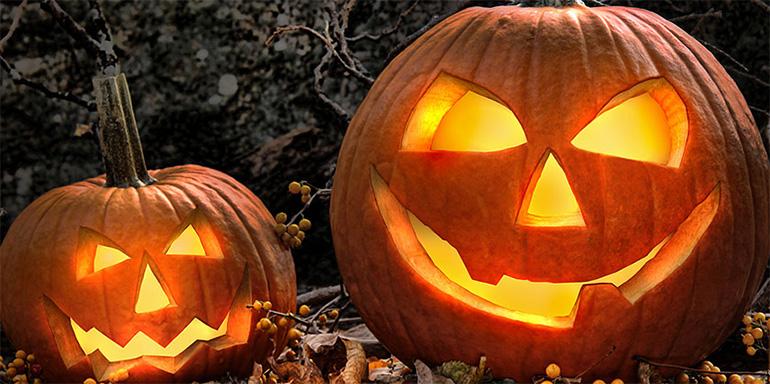 Halloween Wordpress Themes
