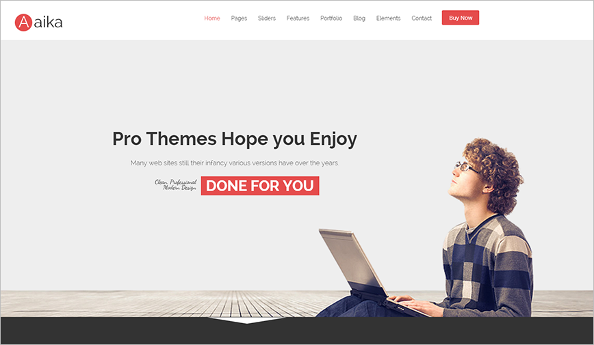 Professional Business Drupal Theme