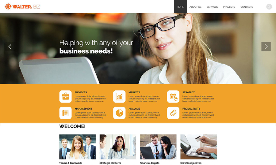 Responsive HTML5 Business Site Template