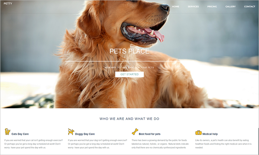 Responsive HTML5 CSS3 Site Template