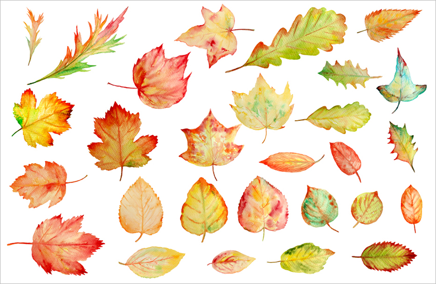 Autumn Leaves Template