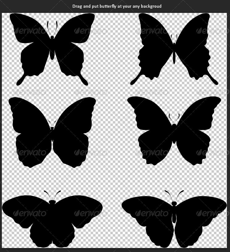 Blank Butterfly Template