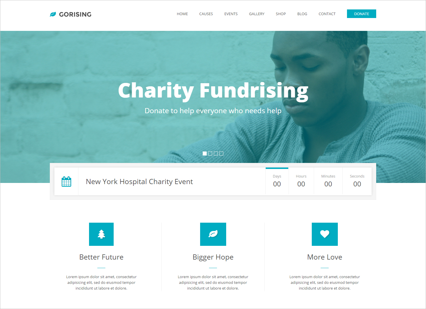 Bootstrap HTML5CSS3 Non Profit Template