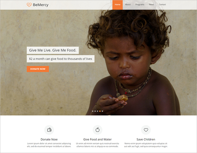 Charity Organisation Web Template