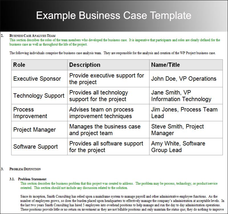 Business Case Example Template