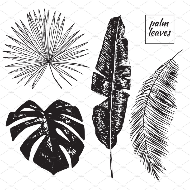 Leaf Template Black & White