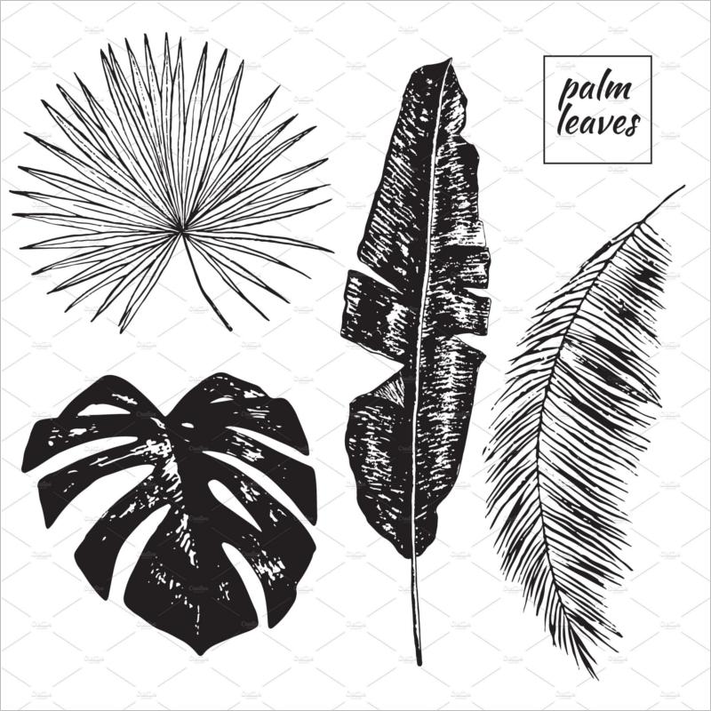 Leaf Template Black & White