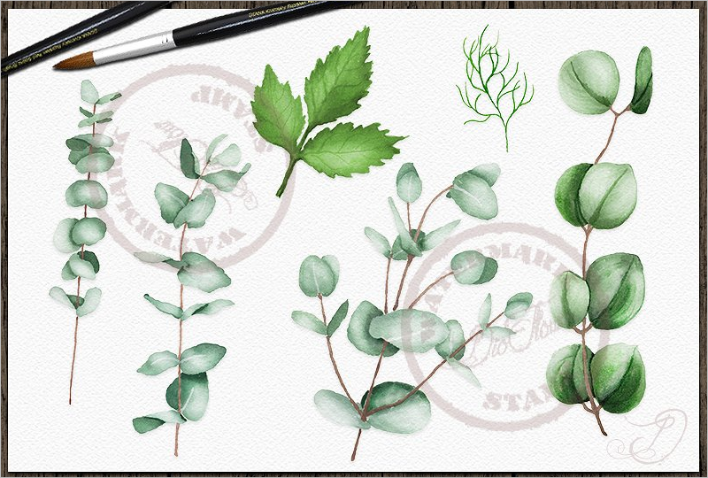 Leaf Template PSD