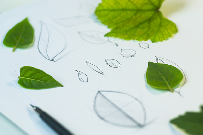 Leaf Vector Font Template