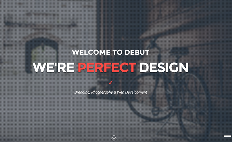 Onepage Parallax Template