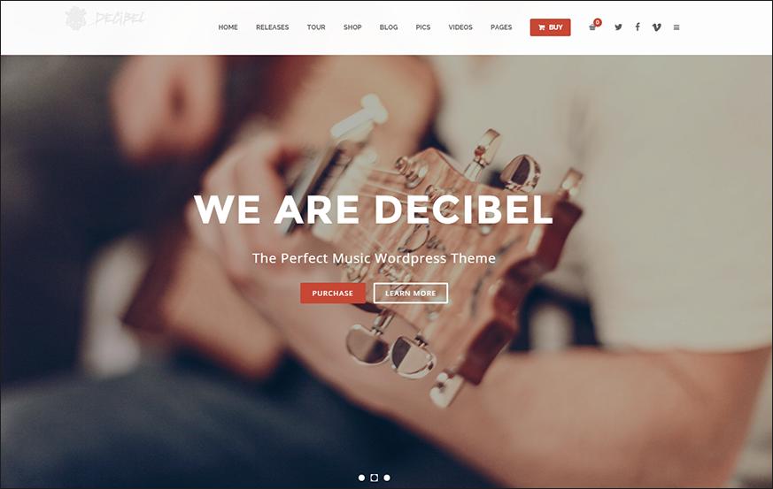 Professional Music WordPress Theme