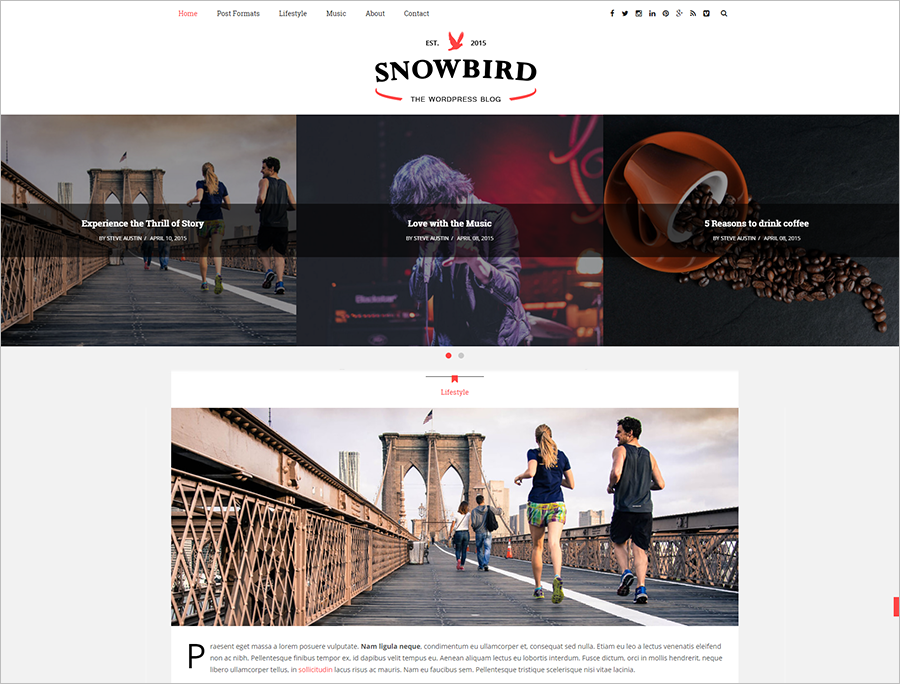 SEO Made Responisve WordPress Blog Theme