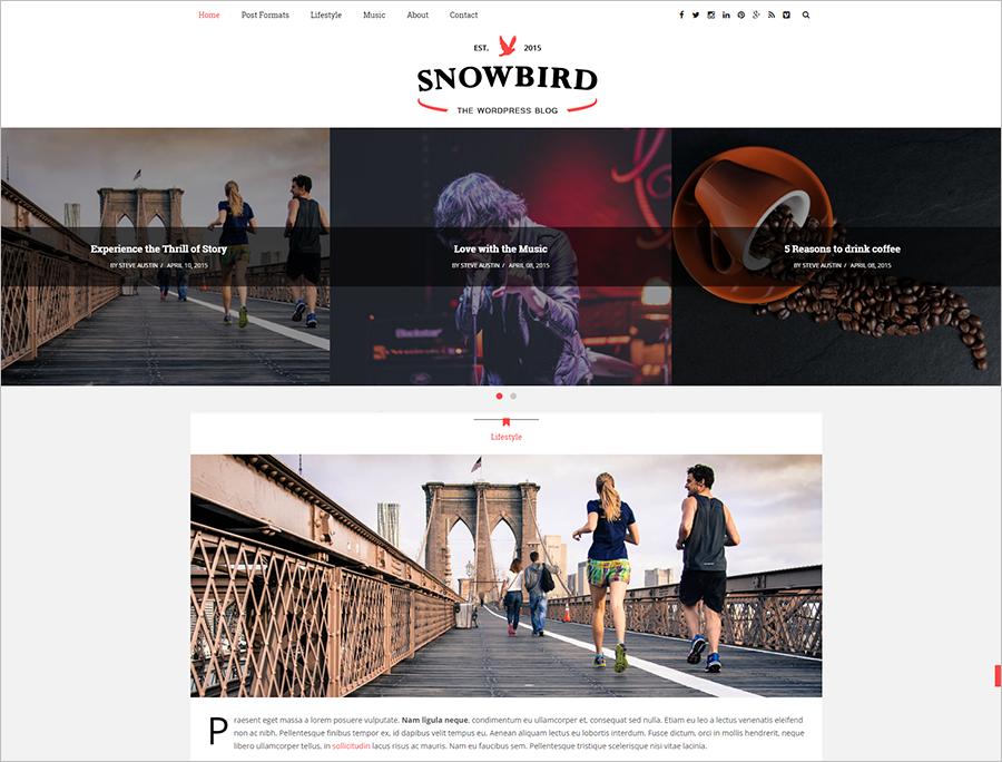 SEO Made Responisve WordPress Blog Theme