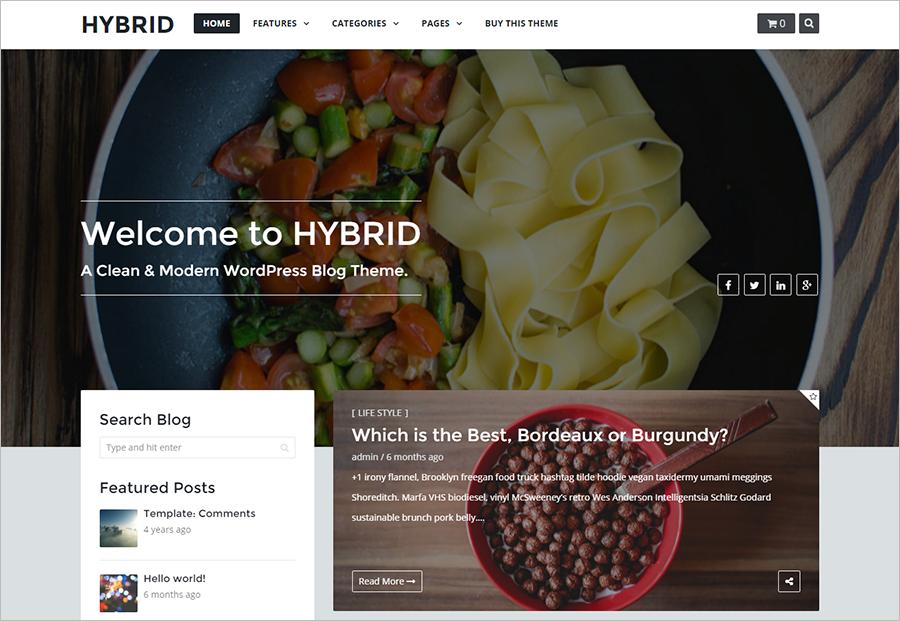SEO Optimized Modern WordPress Blog Theme