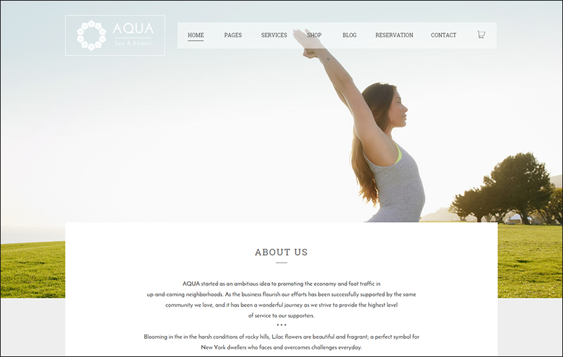 Spa & Beauty Responsive WordPress Theme