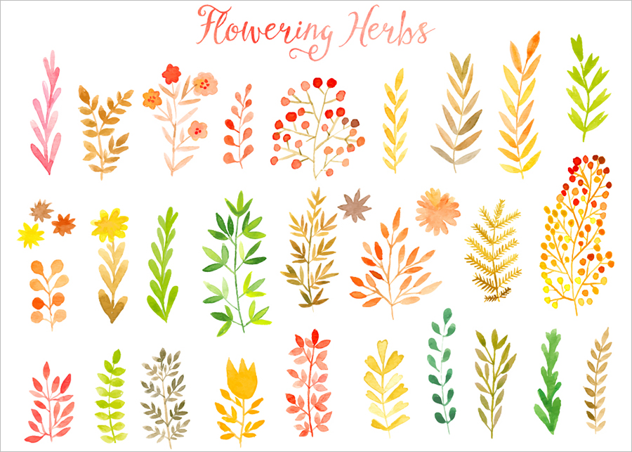 Vector Watercolor Leafs Template