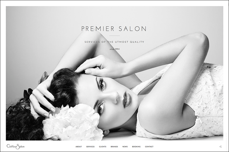 WP Full-Screen Salon Theme