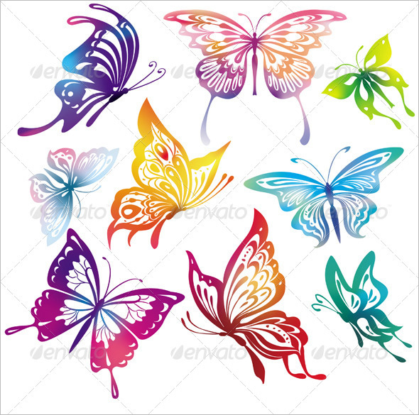 animal butterflies