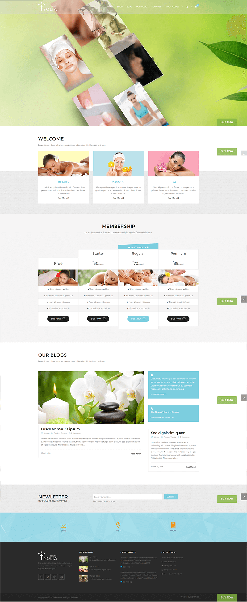 Beauty Spa Blog WordPress Theme