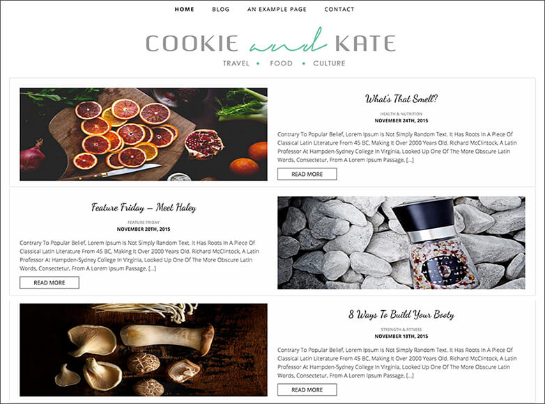 Food & Travel Blog Theme