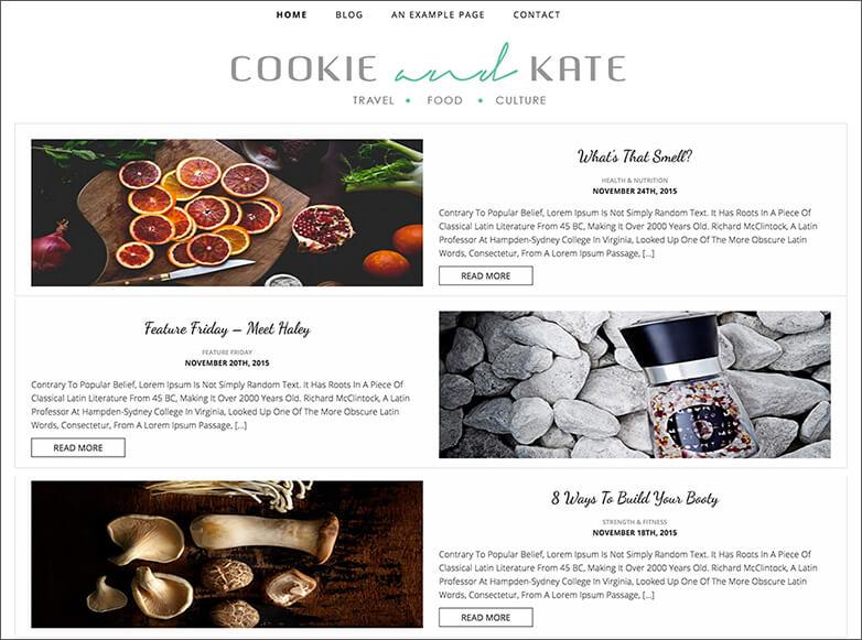 Food & Travel Blog Theme