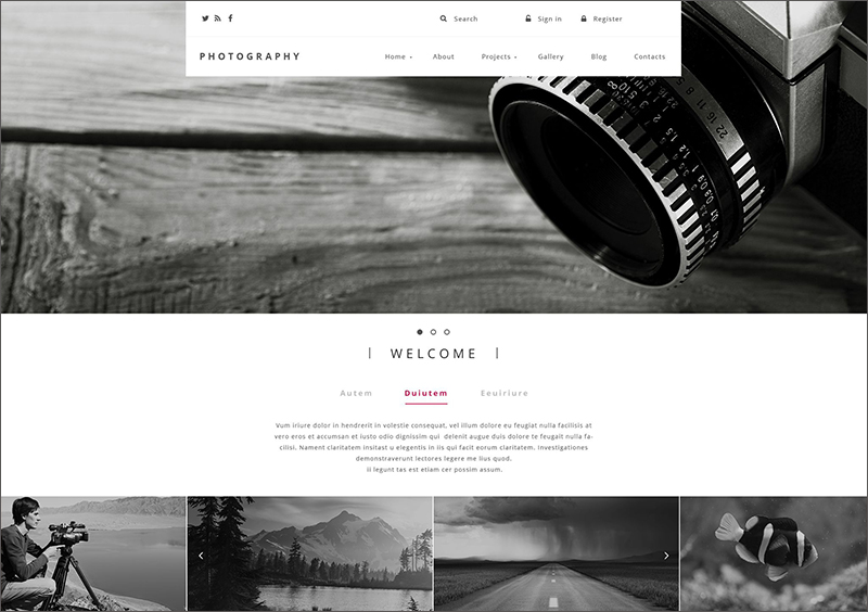 Photography Blog Drupal Template