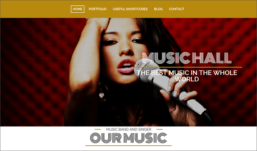 Responsive WordPress Theme For Musicians