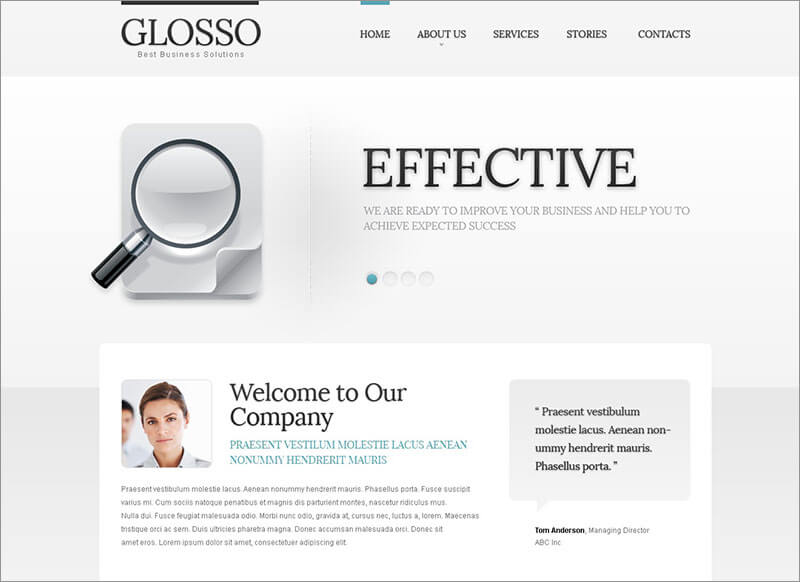 Effective SEO Website Joomla Template