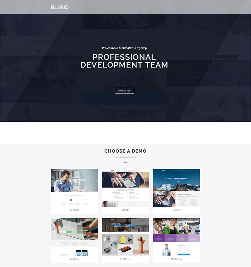 Free e Commerce Drupal Theme