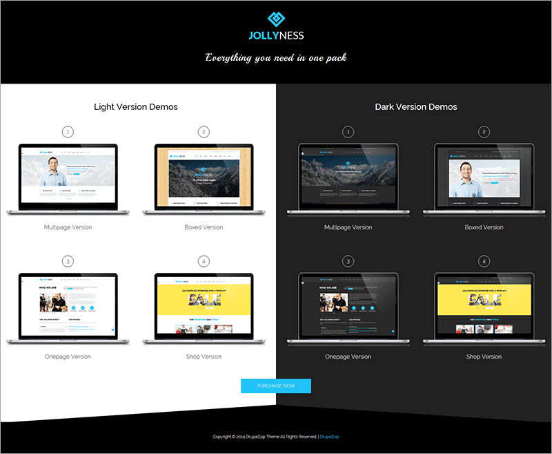 Premium e Commerce Drupal Theme